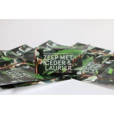 Werfzeep met Ceder & Laurier